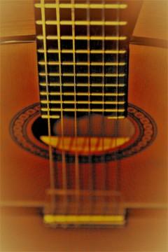 em acoustic (2)
